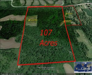 Aerial photo of Marion 107 acre parcel