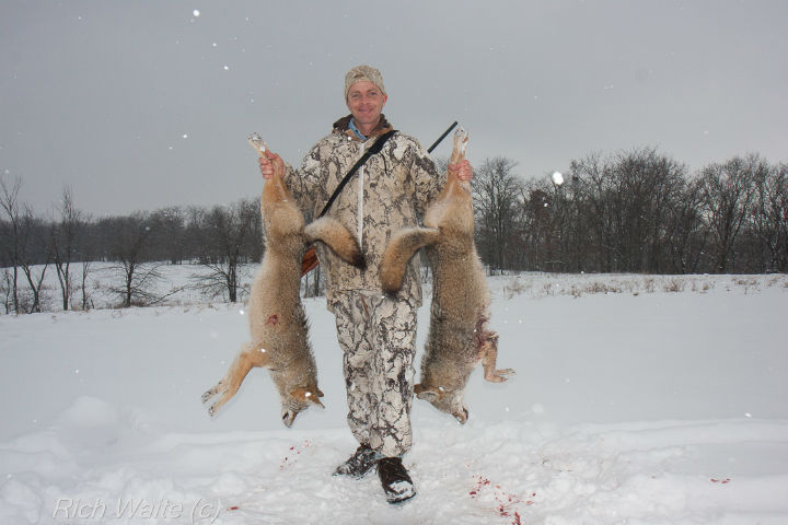 Picture of a man holding two coyotes after calling them in (Iowa).